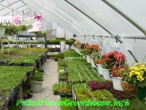 greenhouse044